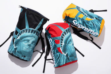 2019 supreme tnf statue of liberty waterproof backpack