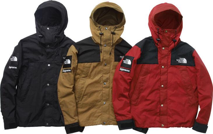 2010  supreme tnf mountain jacket