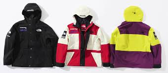 2018 supreme tnf expedition jacket