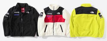2018 supreme tnf expedition fleece jacket