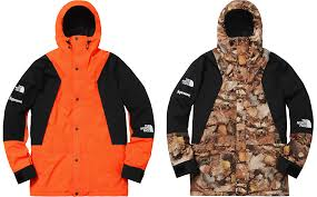 2016 supreme tnf mountain light jacket