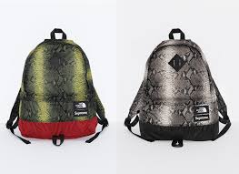 2018 supreme tnf lightweight day pack