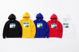 2018 tnf photo hooded sweatshirt