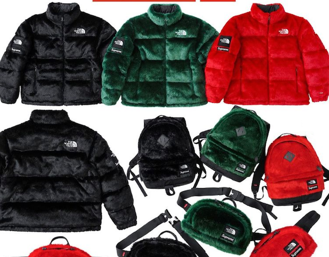 SUPREME 2020AW WEEK16 THE NORTH FACE